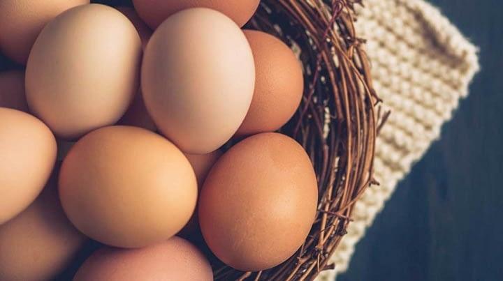 Global Egg Market, Global Egg Industry, Egg Market Research Report - Ken Research