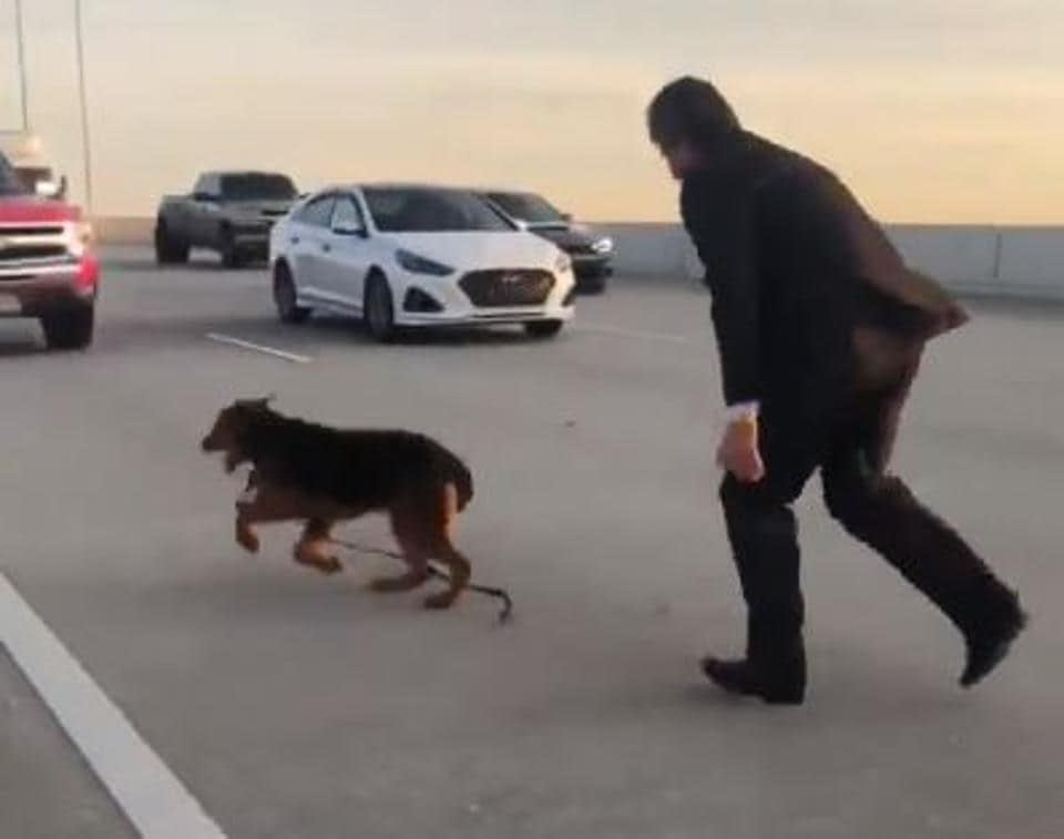 Houston man chases after a dog that got loose on the Beltway 8.