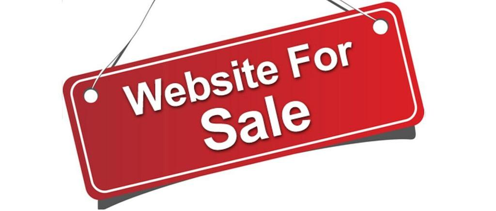 TURNKEY PROFITABLE AUCTION WEBSITE SCRIPT